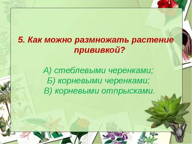 5. Как можно размножать растение прививкой? А) стеблевыми черенками; Б) корне...