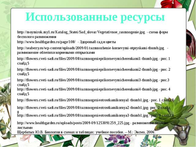 http://moymirok.my1.ru/Katalog_Statei/Sad_slovar/Vegetativnoe_rasmnogenie.jpg...