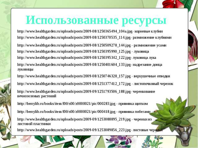 Использованные ресурсы http://www.healthgarden.ru/uploads/posts/2009-08/12503...