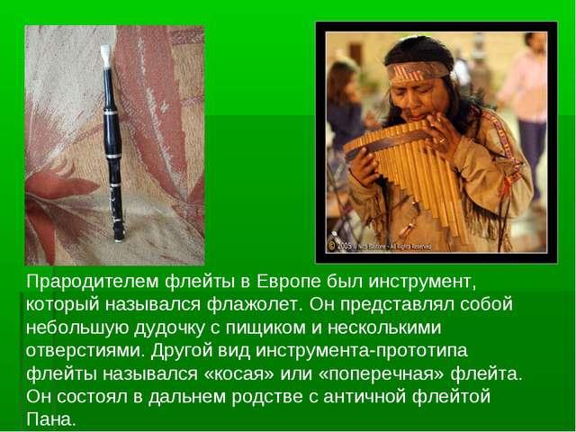 Прародителем флейты в Европе был инструмент, который назывался флажолет. Он...