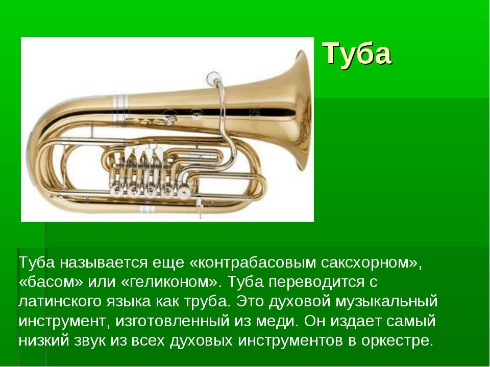 Туба Туба называется еще «контрабасовым саксхорном», «басом» или «геликоном»...