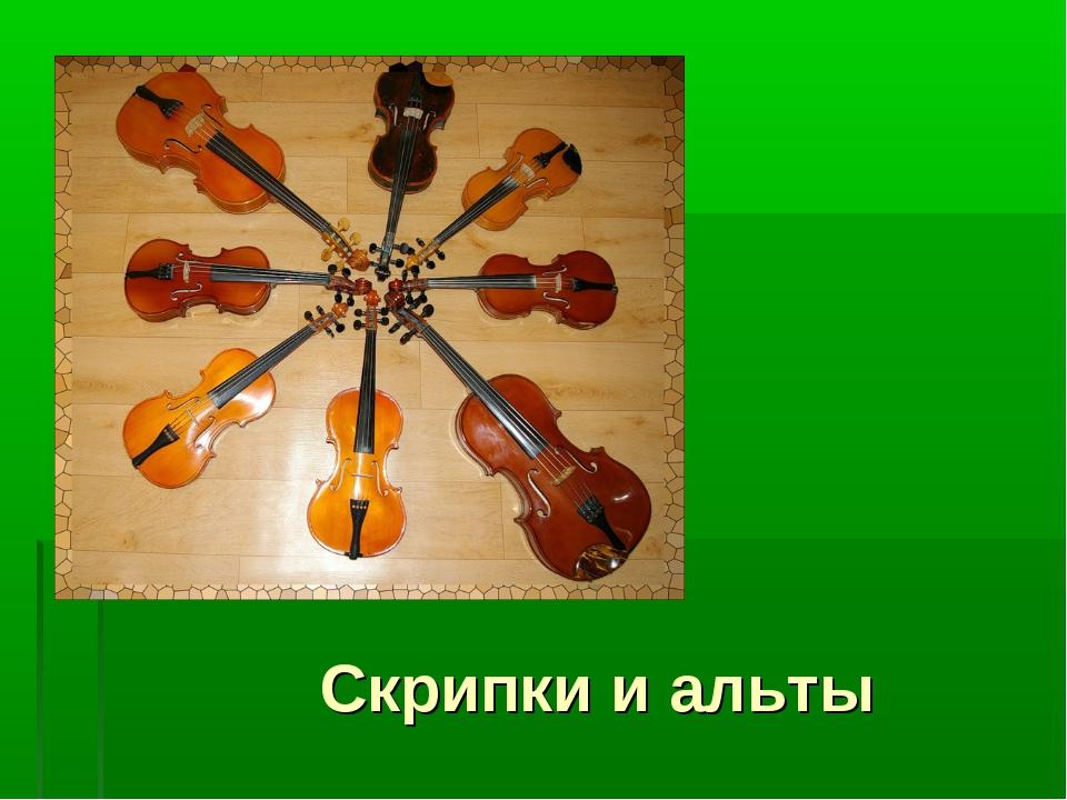 Скрипки и альты