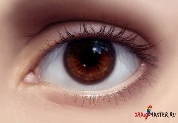 C:\Users\VAIO\Desktop\DrawMaster.ru_kak-risovat-realistichniy-glaz.jpg