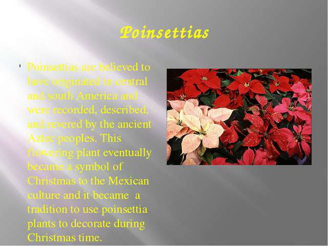 Poinsettias Poinsettias are believed to have originated in central and south...