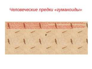 Человеческие предки «гуманоиды» Эволюционные линии, ведущие к человеку и шимп
