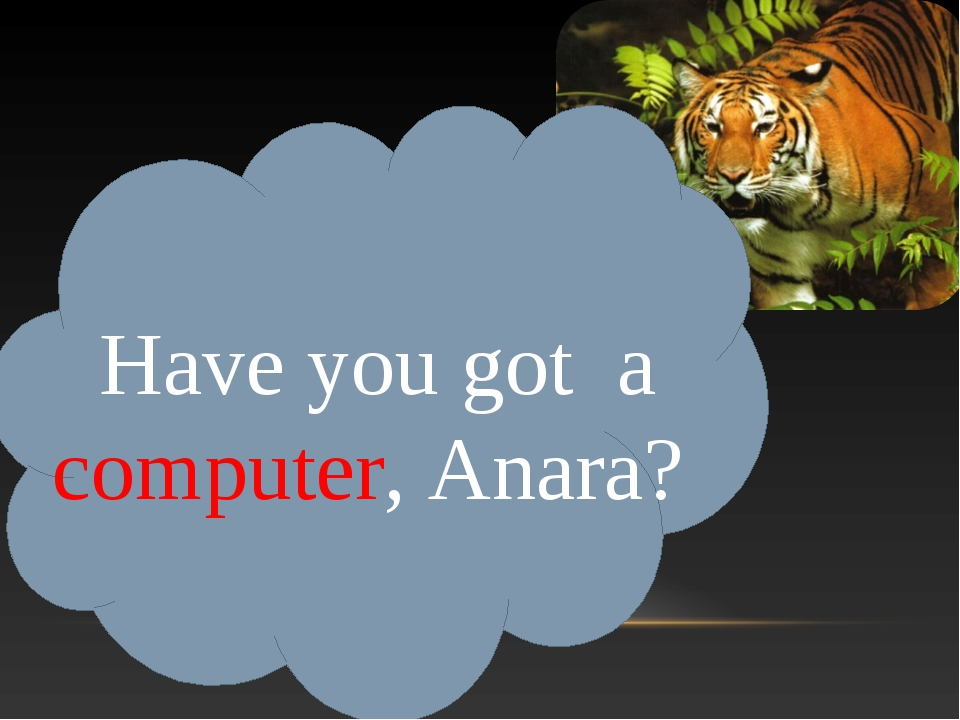 Have you got a computer, Anara?