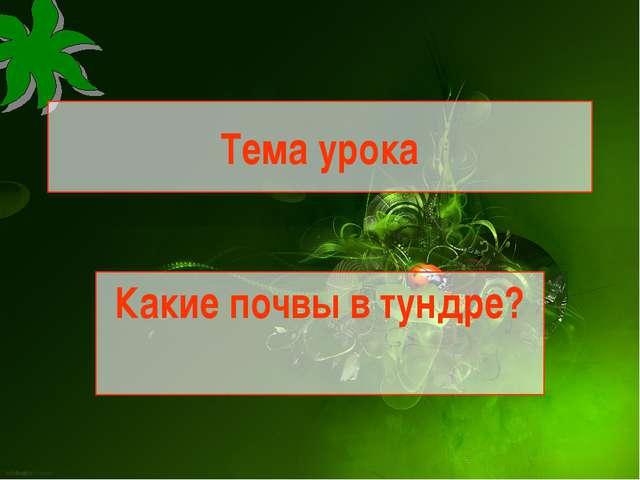 Тема урока Какие почвы в тундре?