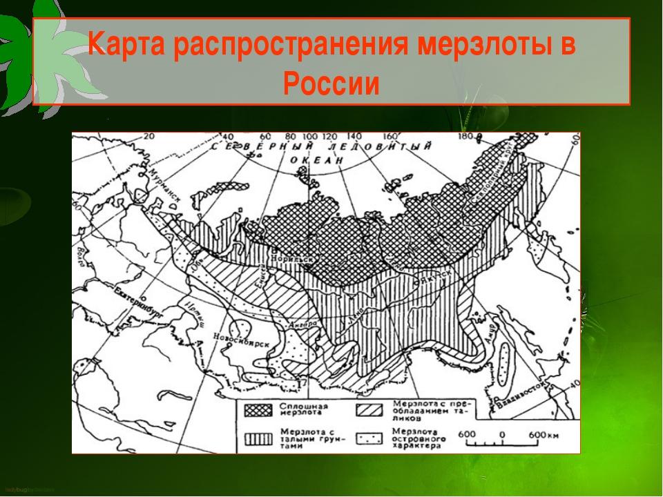 Карта распространения мерзлоты в России