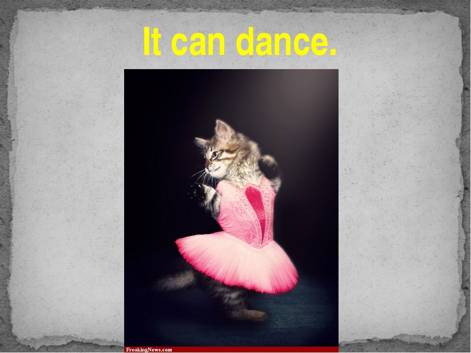 It can dance.