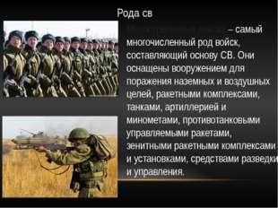 Рода св Мотострелковые войска – самый многочисленный род войск, составляющий