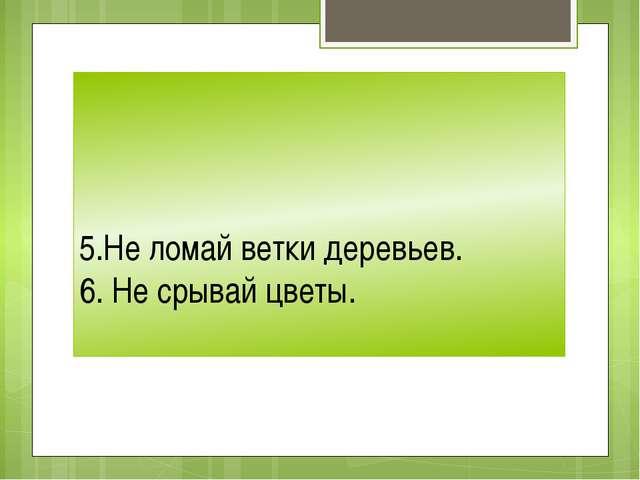 5.Не ломай ветки деревьев. 6. Не срывай цветы.