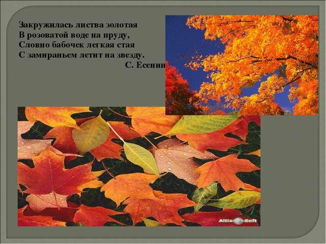 Закружилась листва золотая В розоватой воде на пруду, Словно бабочек легкая с...