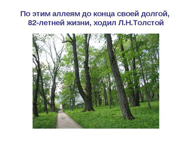 По этим аллеям до конца своей долгой, 82-летней жизни, ходил Л.Н.Толстой