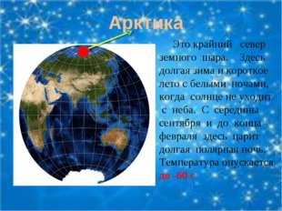 Арктика Это крайний север земного шара. Здесь долгая зима и короткое лето с б