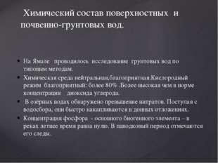На Ямале проводилось исследование грунтовых вод по типовым методам. Химическа