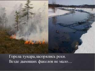 Горела тундра,засорялись реки. Везде дымящих факелов не мало…