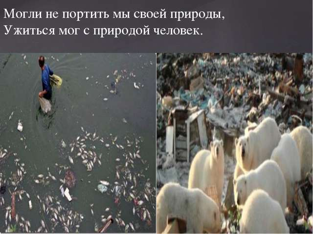 Могли не портить мы своей природы, Ужиться мог с природой человек.