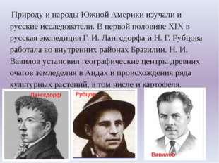 Природу и народы Южной Америки изучали и русские исследователи. В первой пол
