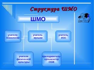 Структура ШМО