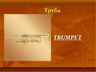 Труба. TRUMPET
