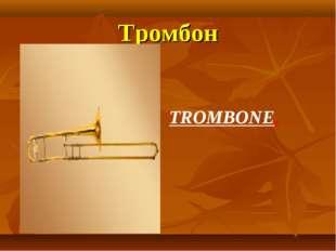 Тромбон TROMBONE.