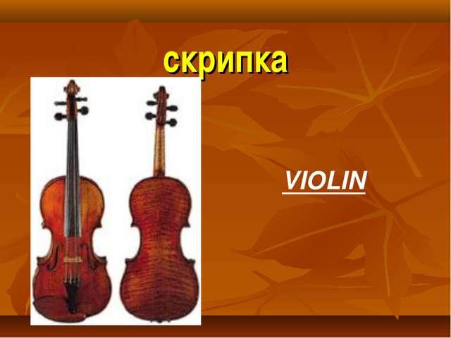 скрипка VIOLIN