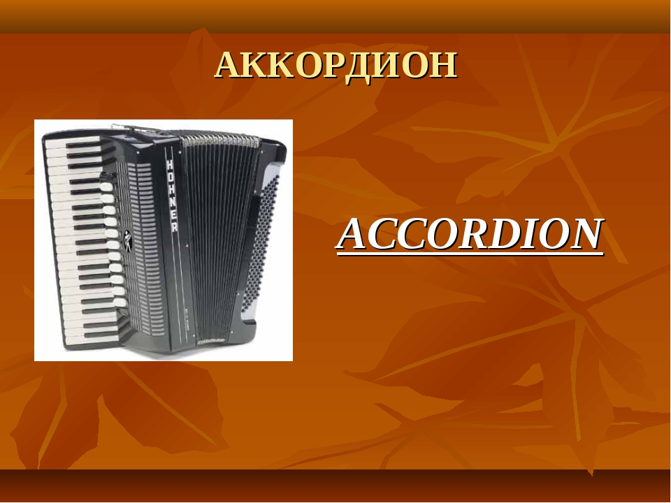 АККОРДИОН ACCORDION