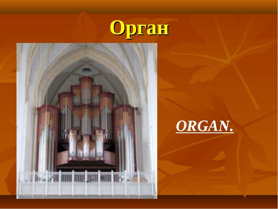 Орган ORGAN.