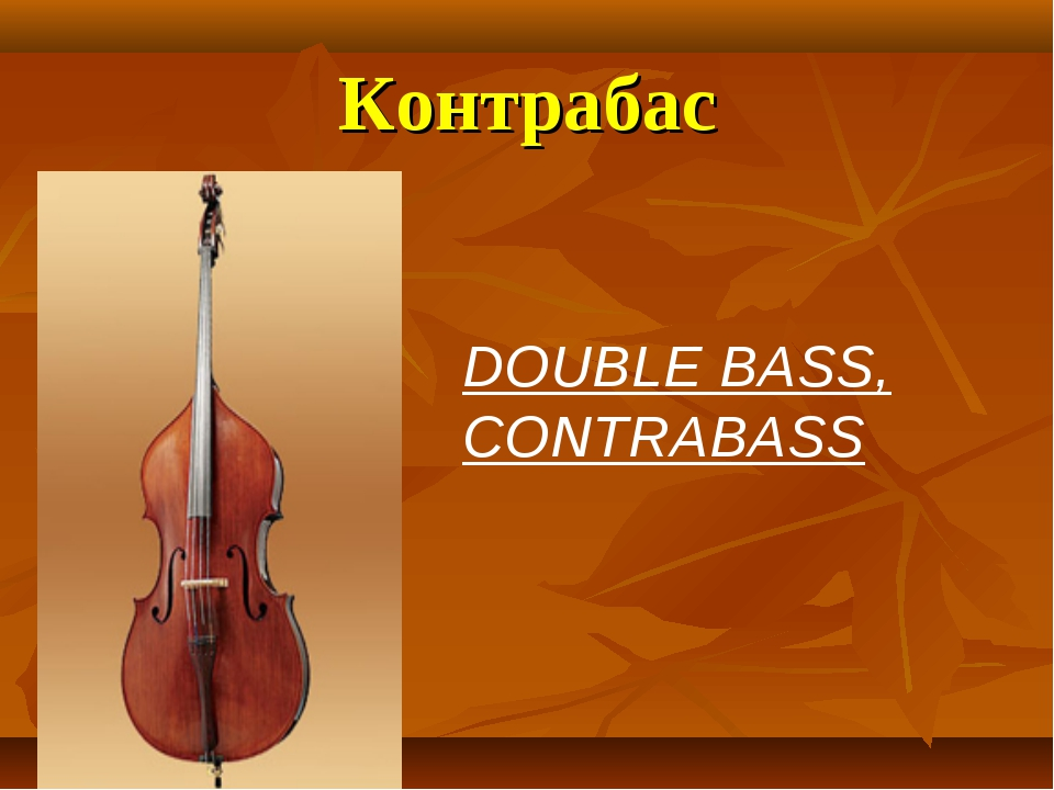 Контрабас DOUBLE BASS, CONTRABASS