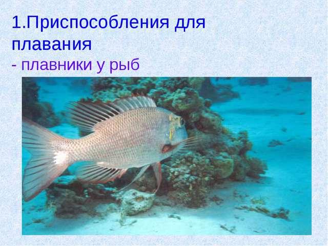 1.Приспособления для плавания - плавники у рыб