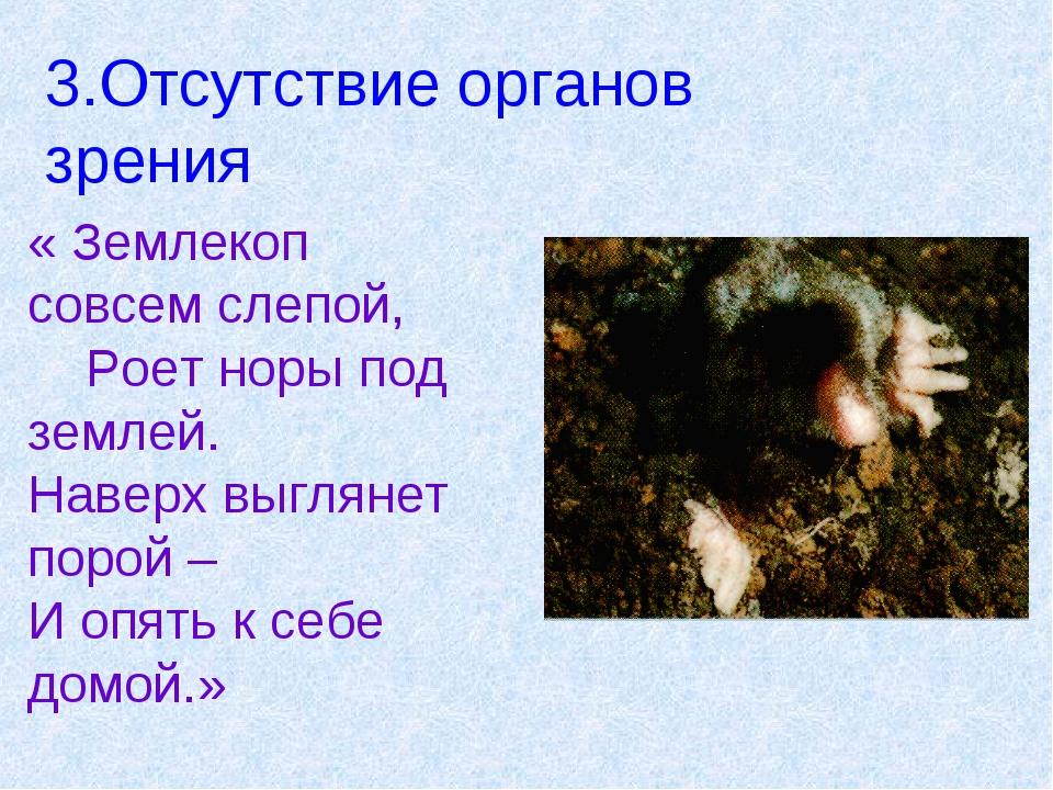 3.Отсутствие органов зрения « Землекоп совсем слепой, Роет норы под землей. Н...