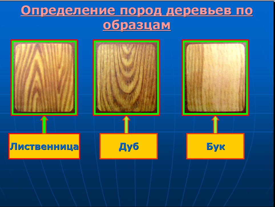 hello_html_35b4ea18.jpg