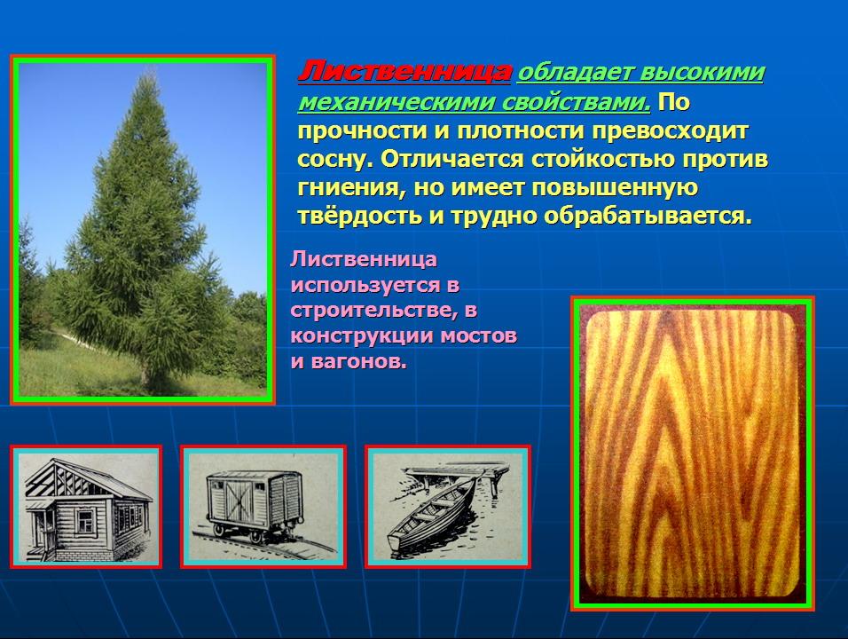hello_html_38885a24.jpg