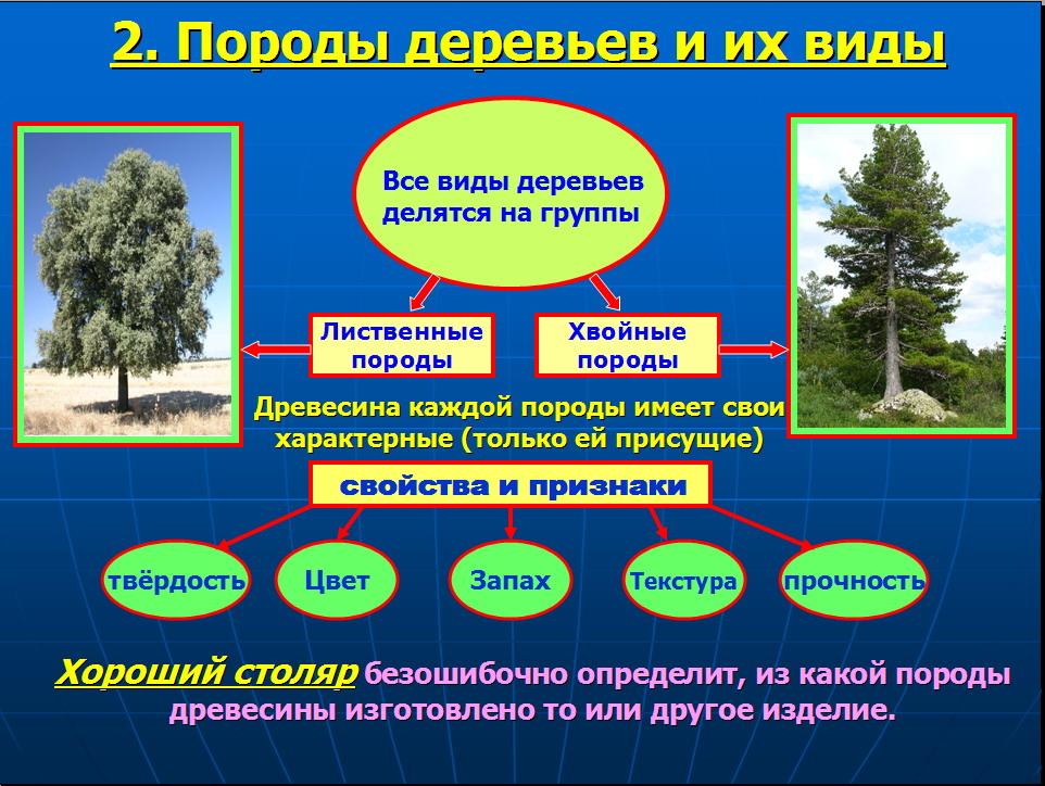 hello_html_m4cffe0a5.jpg