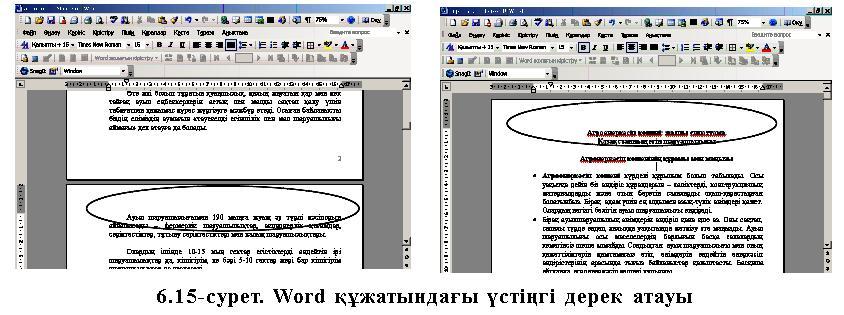 http://www.compobuch.kz/docs/book_kaz/66.jpg