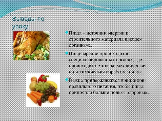 Выводы по уроку: Пища – источник энергии и строительного материала в нашем ор...