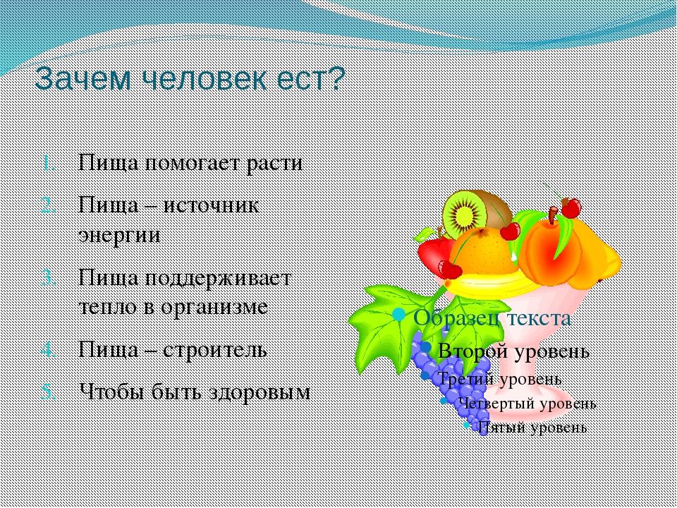 Зачем человек ест? Пища помогает расти Пища – источник энергии Пища поддержив...