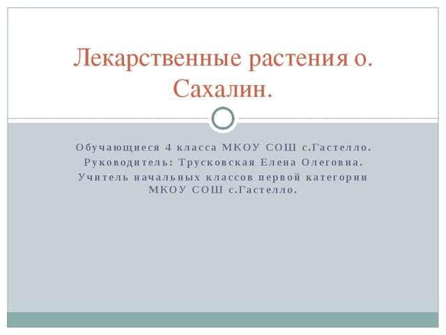 Обучающиеся 4 класса МКОУ СОШ с.Гастелло. Руководитель: Трусковская Елена Оле...