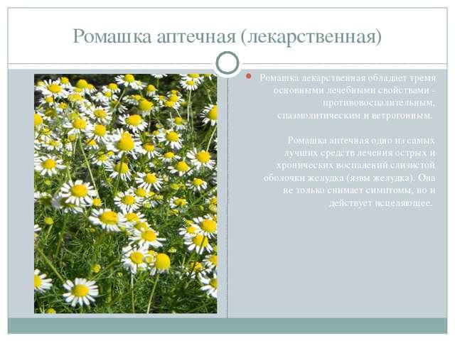 Ромашка аптечная (лекарственная) Ромашка лекарственная обладает тремя основны...