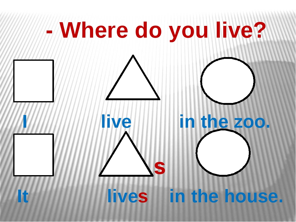 - Where do you live? I live in the zoo. s It lives in the house.