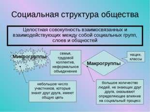 Социальная структура общества Целостная совокупность взаимосвязанных и взаимо