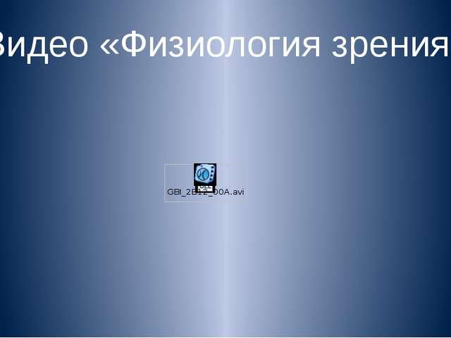 Видео «Физиология зрения»