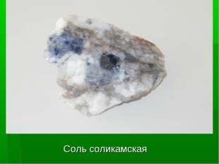 Соль соликамская