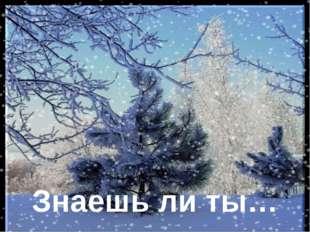 Общегимназический конкурс чтецов Награждение Волшебница зима