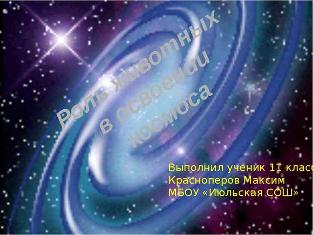 Роль животных в освоении космоса Выполнил ученик 11 класса Красноперов Макси...