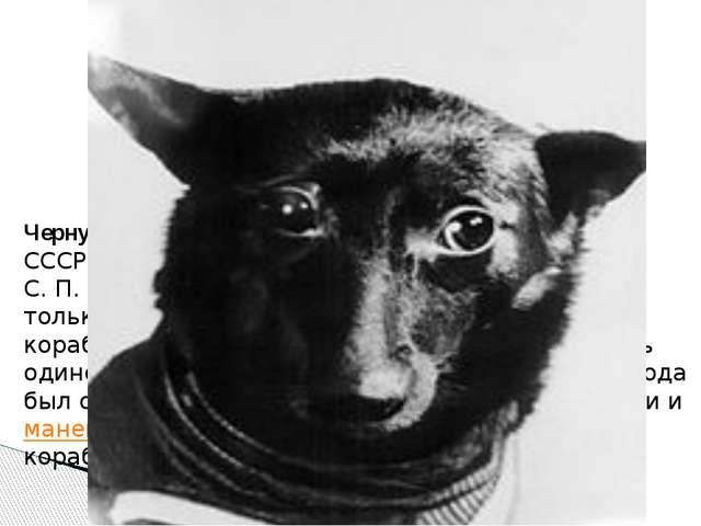 Чернушка Несмотря на требование правительства СССР о срочном запуске в космос...