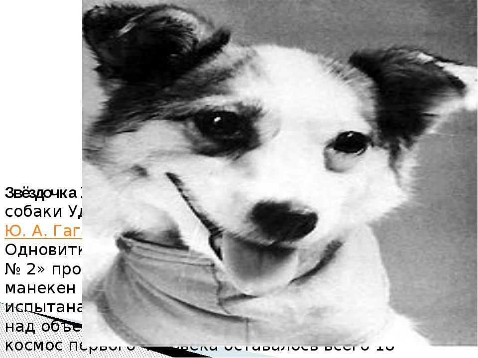 Звёздочка 25 марта 1961 года состоялся полёт собаки Удача, которой первый кос...