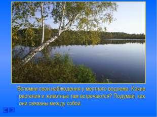 Вспомни свои наблюдения у местного водоема. Какие растения и животные там вс