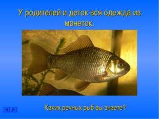 У родителей и деток вся одежда из монеток. Каких речных рыб вы знаете?