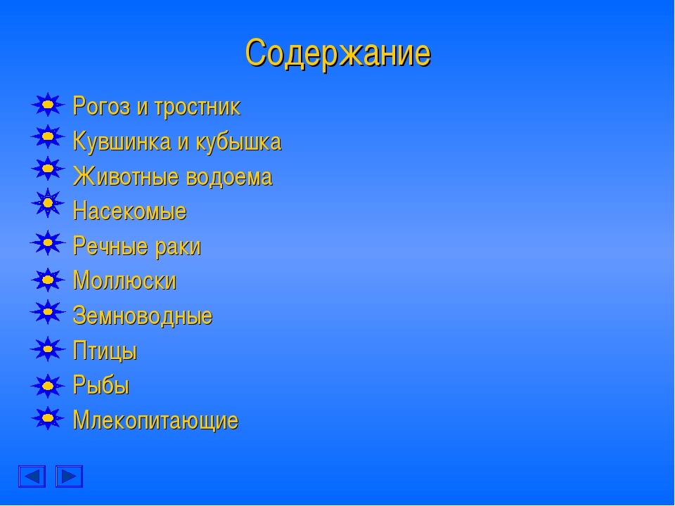 Содержание Рогоз и тростник Кувшинка и кубышка Животные водоема Насекомые Реч...